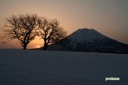 sunrise20060415_s2dscf8503_2org.jpg