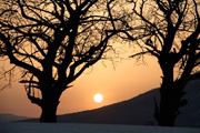 sunrise20060415_s2dscf8516_2org.jpg