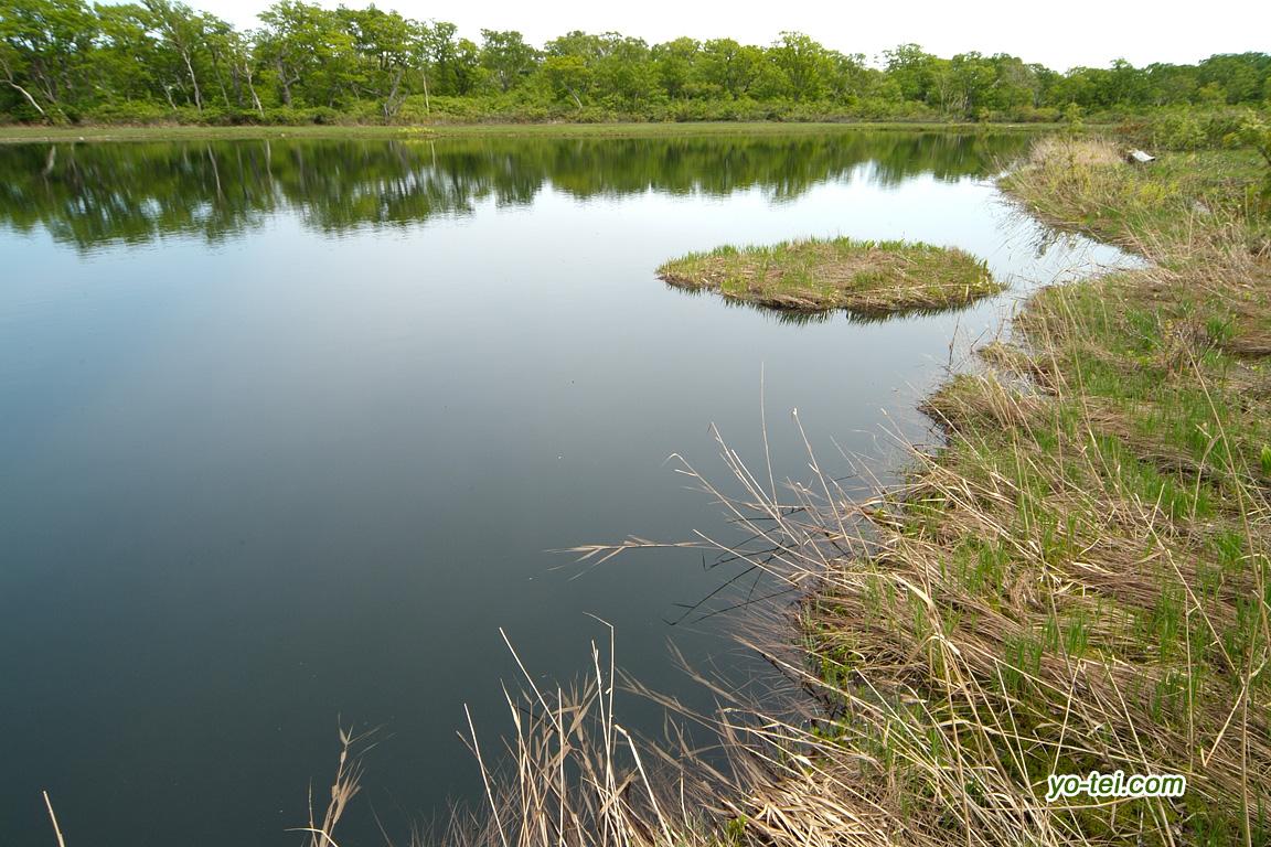 鏡沼と浮島