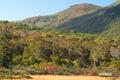 神仙沼湿原から見るシャクナゲ岳