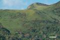 神仙沼への木道から見る白樺山
