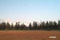 月の残る湿原