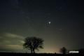 サクランボの木といて座・さそり座・木星