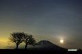 サクランボの木と羊蹄山・月