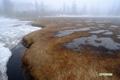 雪融けの進む神仙沼湿原