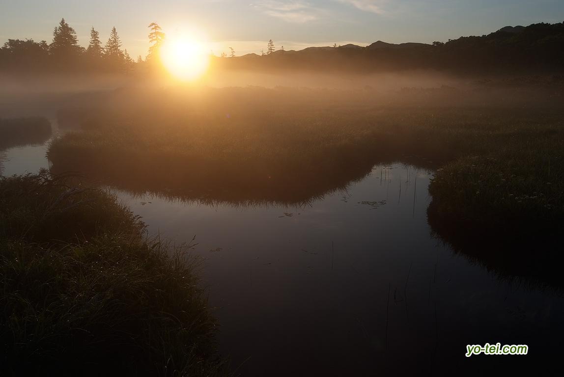 朝陽と湿原