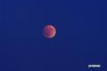 月食拡大~1