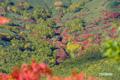 紅葉~ワイスホルン南斜面