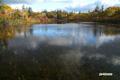 紅葉の神仙沼
