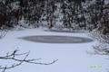 雪が融けている付近の拡大