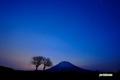 サクランボの木と羊蹄山~夜明け間近
