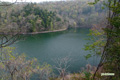 新緑の半月湖~1