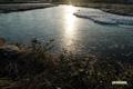 神仙沼~氷の湿原-4