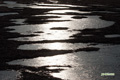 神仙沼~氷の湿原-7