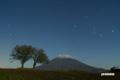 月明かりの羊蹄山とサクランボの木