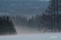 haze20060221_2dscf8105_2m