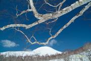 Mtchisenupuri20060405_s3dscf3317_2org