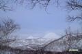チセヌプリ・シャクナゲ岳