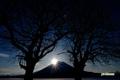 朝陽・羊蹄山・サクランボの木