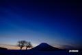 夜明け前・サクランボの木・羊蹄山