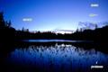 夜明け前の神仙沼