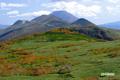 紅葉・羊蹄山・ニセコ連峰東部