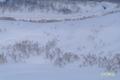道道66号(岩内洞爺線)パノラマラインの除雪状態