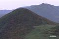 シャクナゲ岳