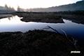 日の出前の池塘