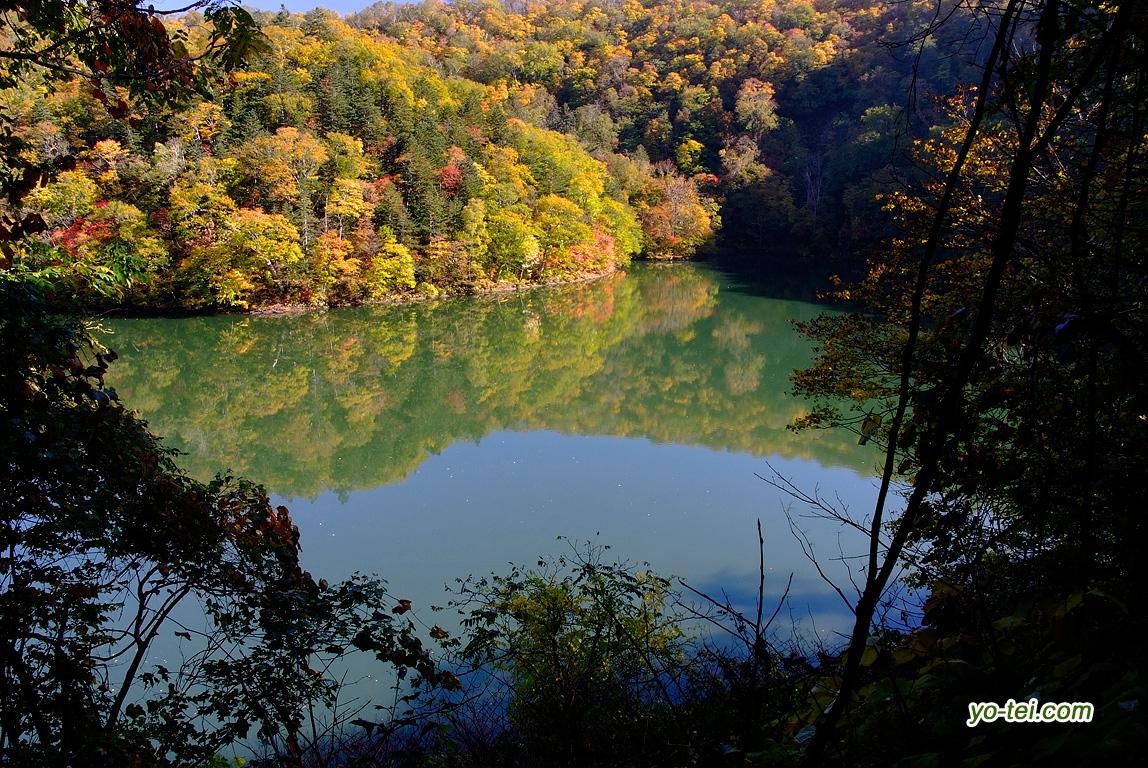 半月湖~紅葉