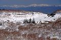 残雪の大谷地湿原