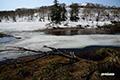 残雪の湿原