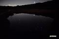 池塘の星座