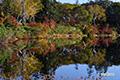 紅葉進む神仙沼