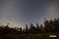 月夜の神仙沼湿原