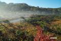 朝霧残る神仙沼湿原