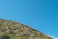 ニセコアンヌプリと下弦の月