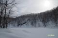 冬の半月湖