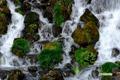 ニセコアンベツ川