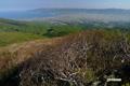 山頂から積丹半島方向