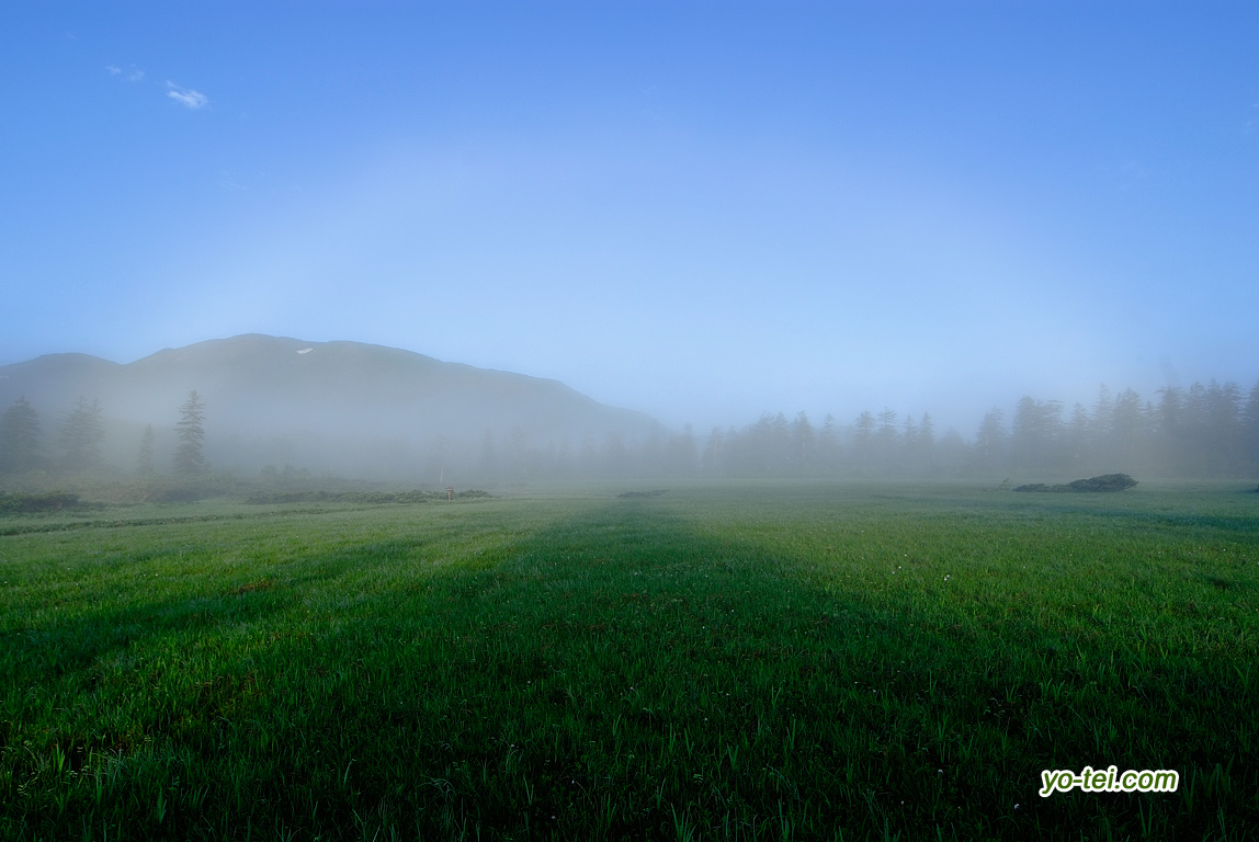 陽が当たり始めた神仙沼湿原