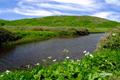 パンケメクンナイ湿原