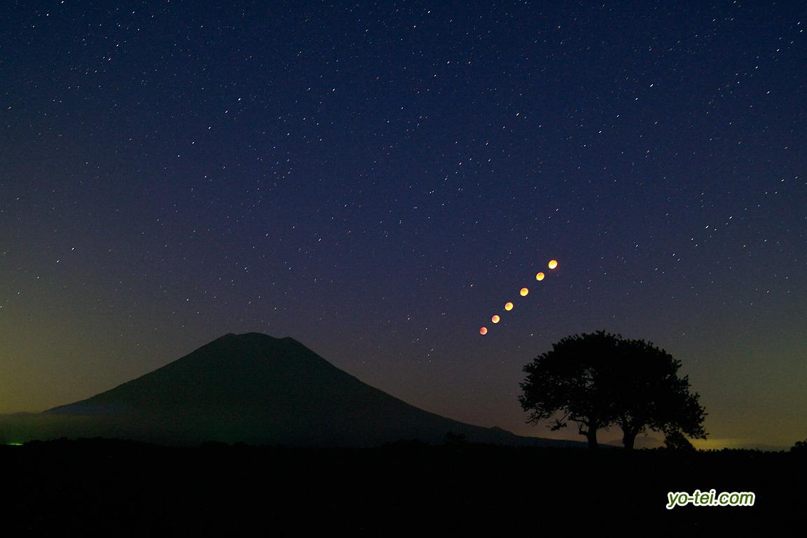 サクランボの木と羊蹄山~皆既中の月の動き