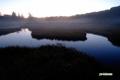 陽があたる直前の湿原