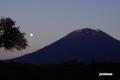 月と羊蹄山