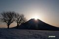 サクランボの木と羊蹄山~山頂からの日の出