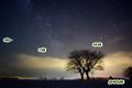 サクランボの木と星空~いて座・さそり座・天の川・木星
