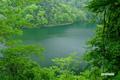 緑深まる半月湖畔