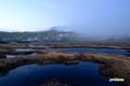 日の出前の神仙沼湿原リ