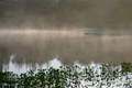 早朝の神仙沼